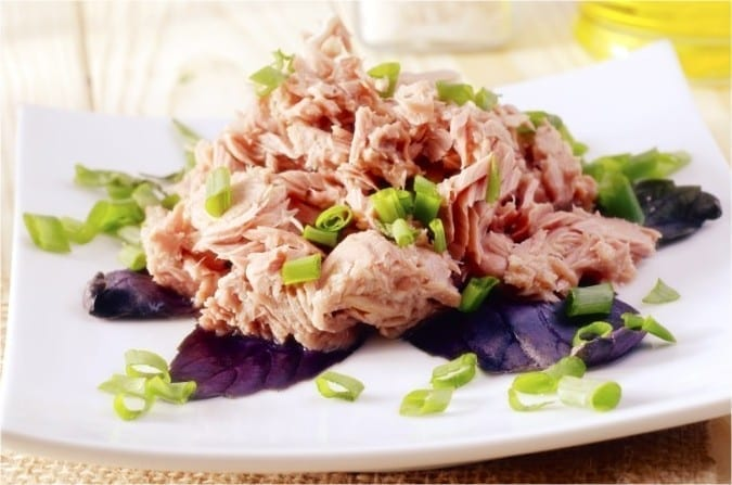 Photo of Maybe Some Tuna