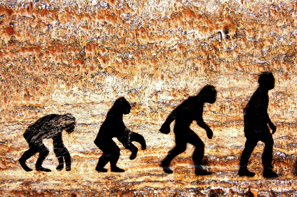 Photo of The Truth About Evolution