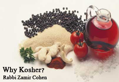 Photo of Why Do We Have to Eat Kosher?