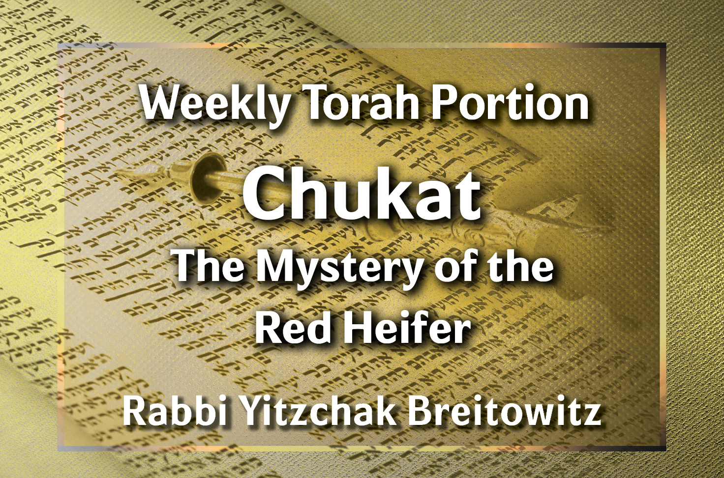 Photo of Chukat – The Mystery of the Red Heifer