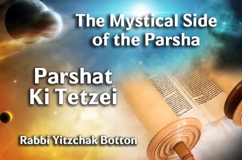 Photo of Parshat Ki Tetzei