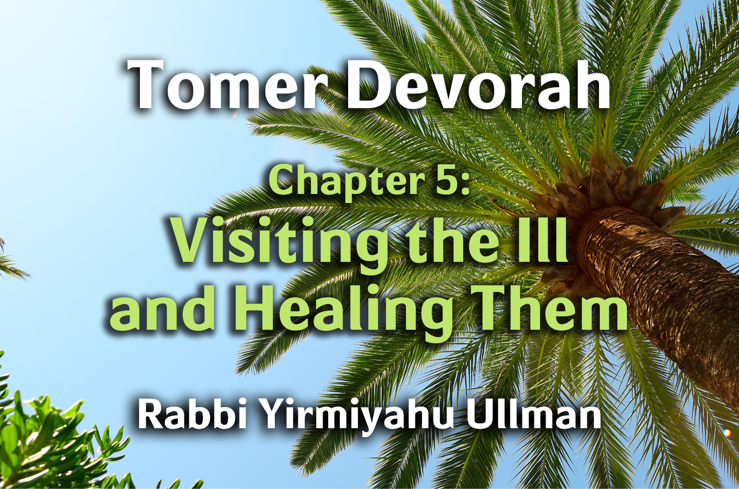 Photo of Tomer Devorah – Chapter 5 – Visiting the Ill and Healing Them