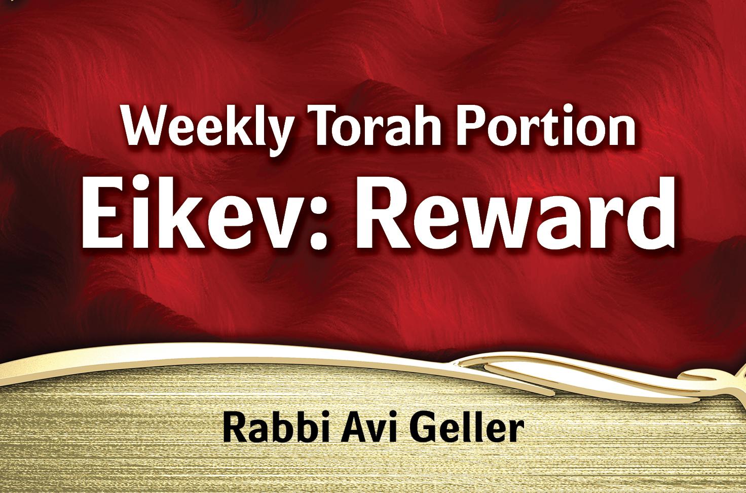 Photo of Eikev – Physical Reward