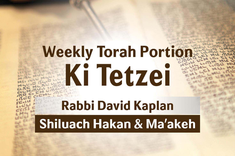 Photo of Ki Tetzei – Shiluach Hakan & Ma'akeh