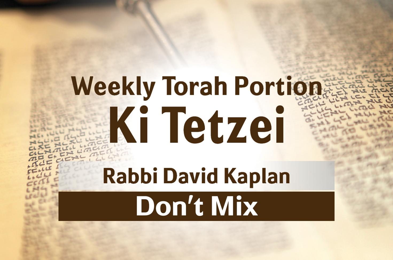 Photo of Ki Tetzei – Don't Mix