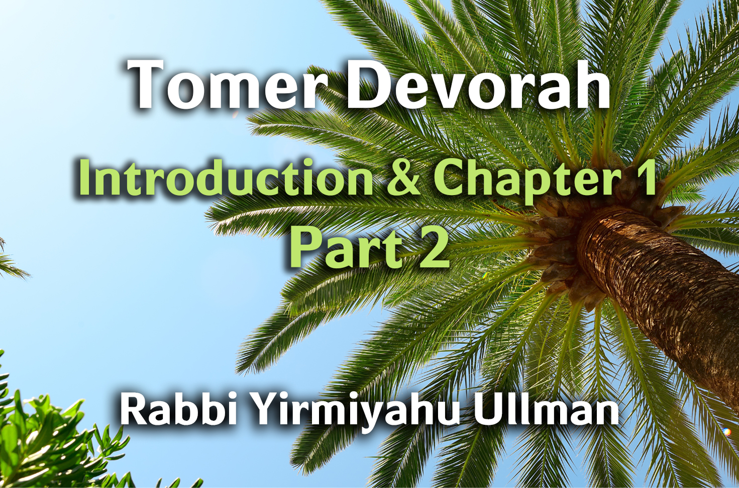 Photo of Tomer Devorah – Introduction and Chapter 1 – Part 2