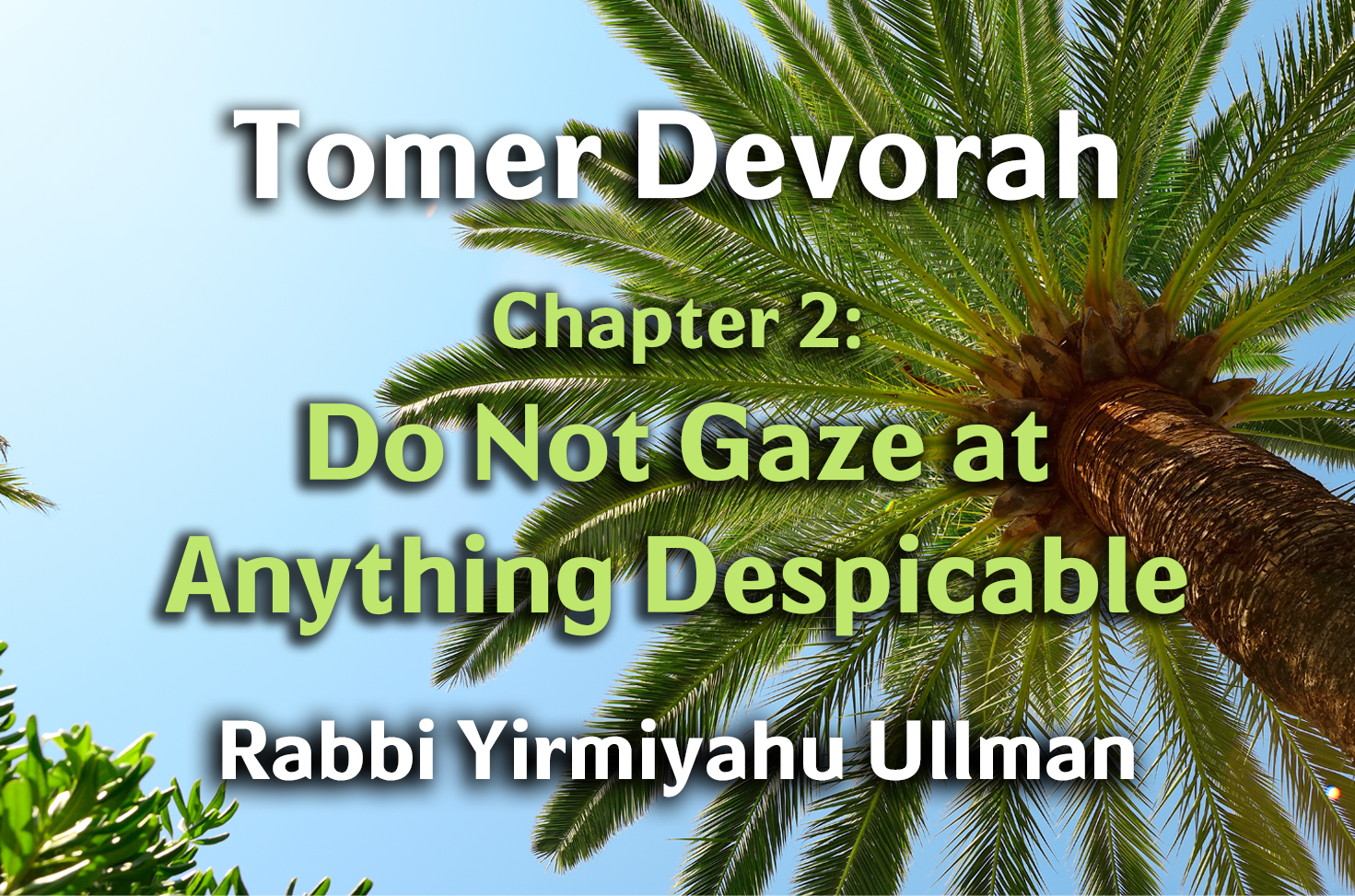 Photo of Tomer Devorah – Chapter 2 – Do Not Gaze at Anything Despicable