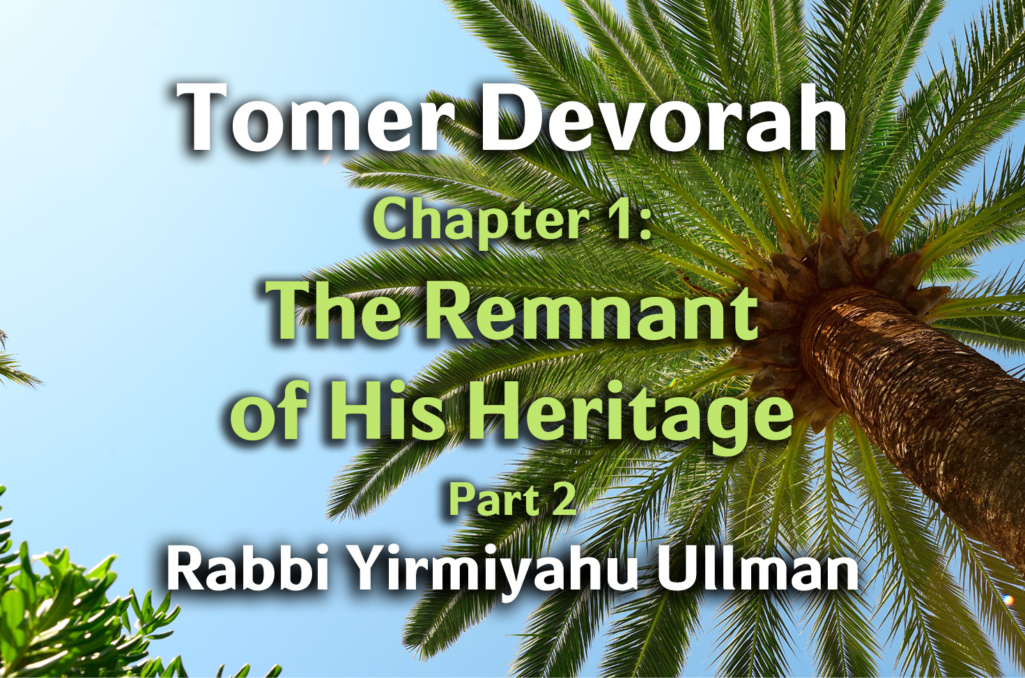 Photo of Tomer Devorah – Chapter 1 – The Remnant of His Heritage – Part 2