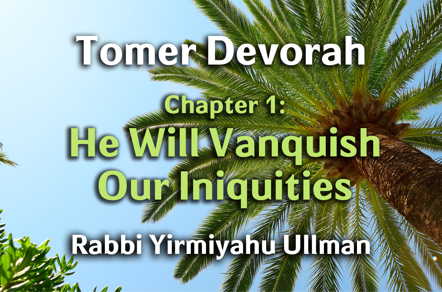 Photo of Tomer Devorah – Chapter 1 – He Will Vanquish Our Iniquities