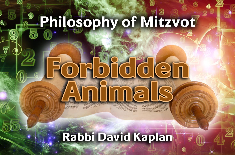 Photo of Forbidden Animals