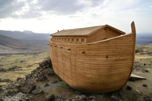 Photo of Questions and Answers about Noah and the Flood
