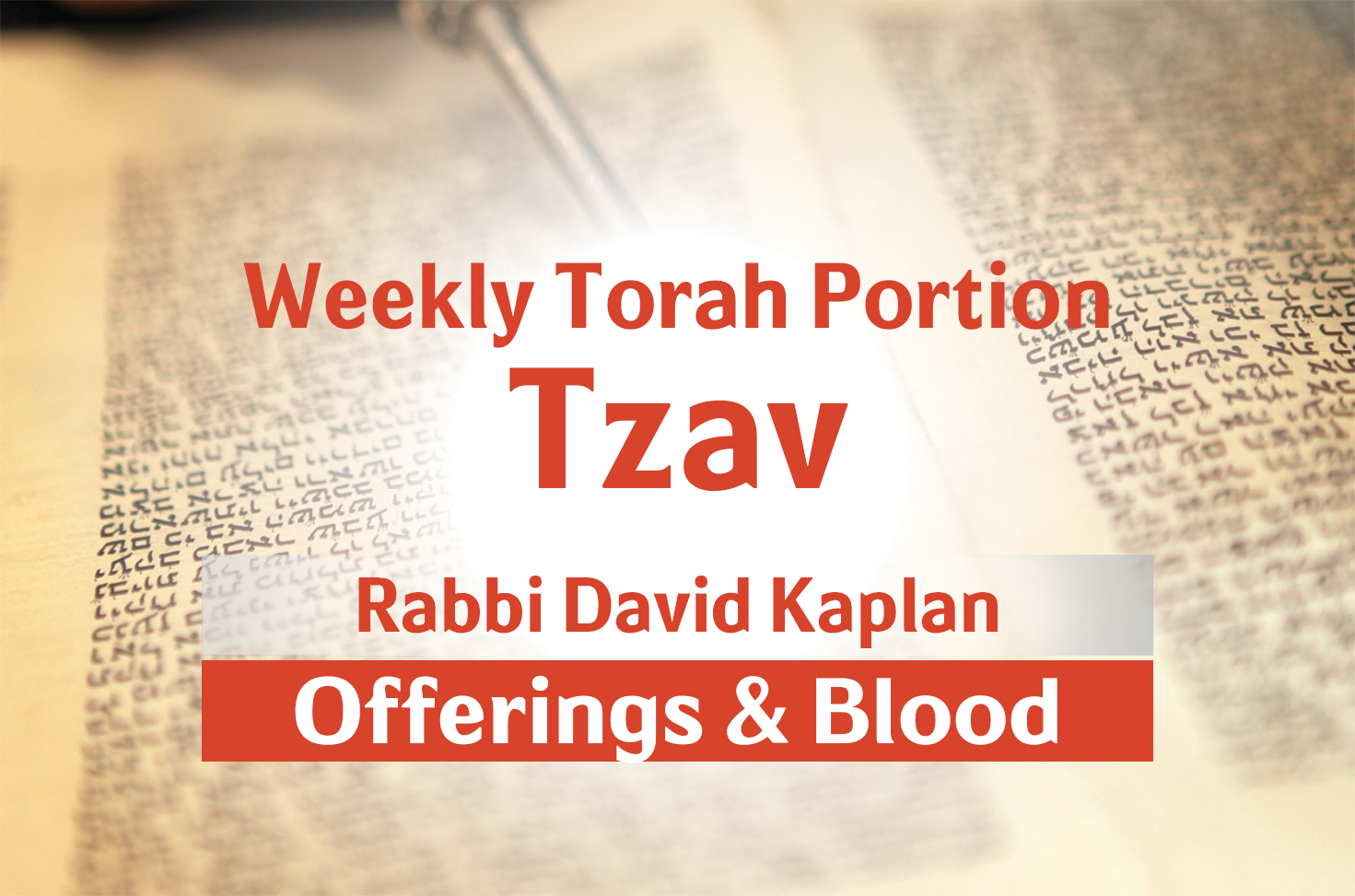 Photo of Tzav – Offerings and Blood