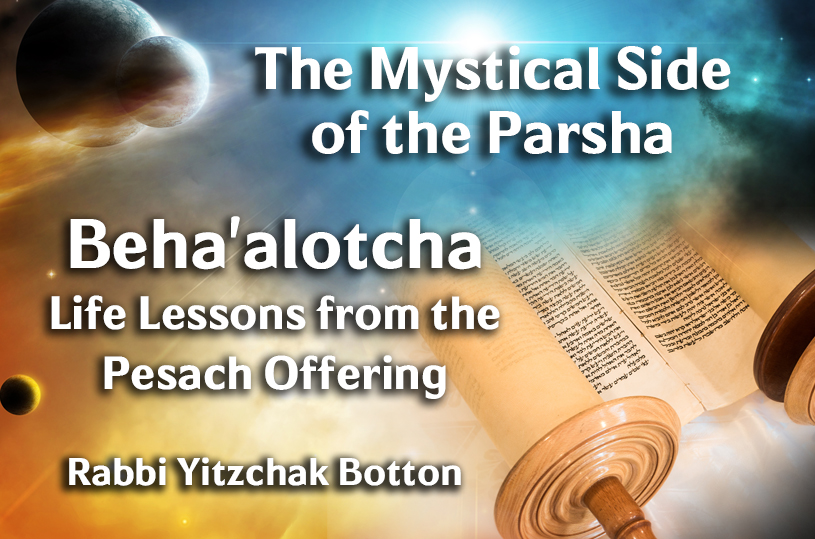 Photo of Beha'alotcha – Life Lessons from the Pesach Offering
