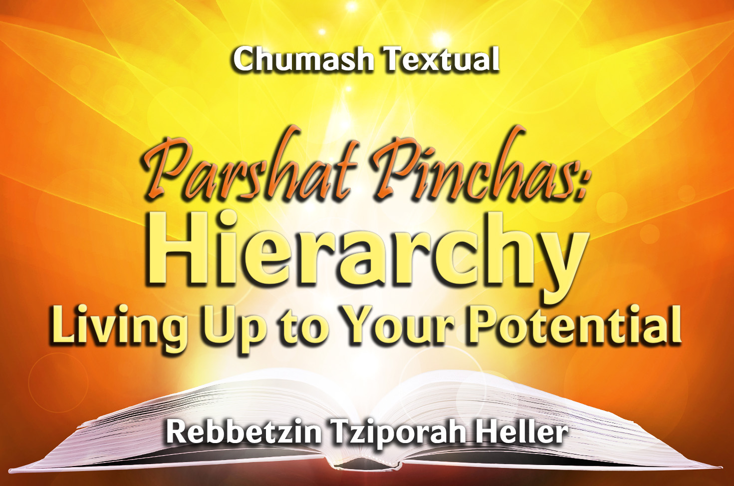 Photo of Parshat Pinchas – Hierarchy – Living Up to Your Potential