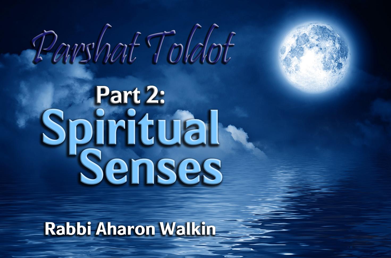 Photo of Parshat Toldot – Part 2 – Spiritual Senses