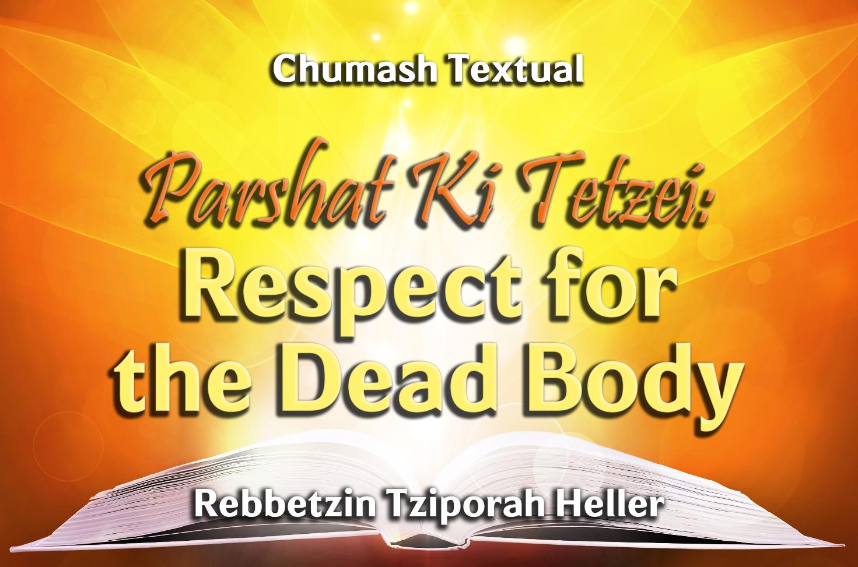 Photo of Parshat Ki Tetzei – Respect for the Dead Body