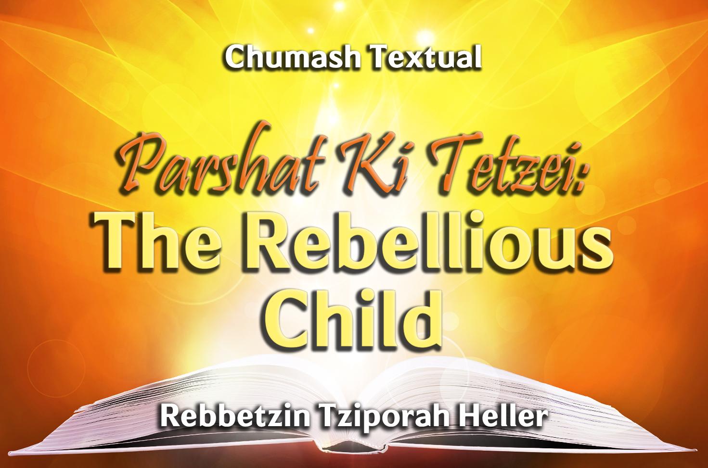 Photo of Parshat Ki Tetzei – The Rebellious Child