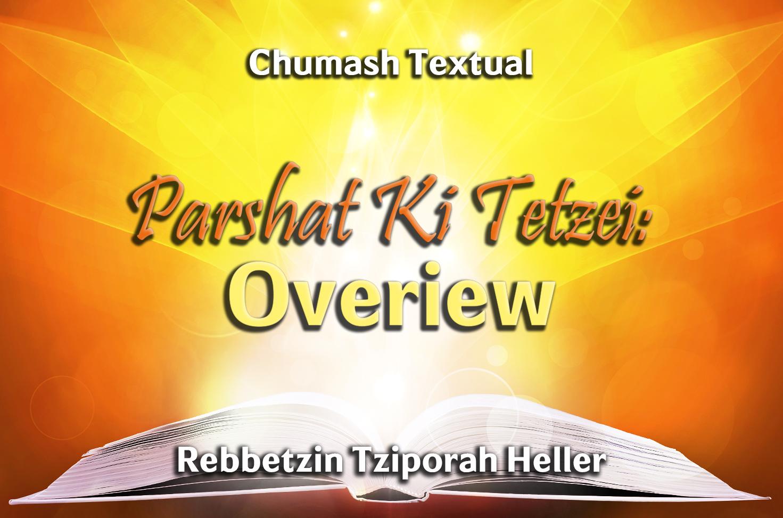 Photo of Parshat Ki Tetzei – Overiew