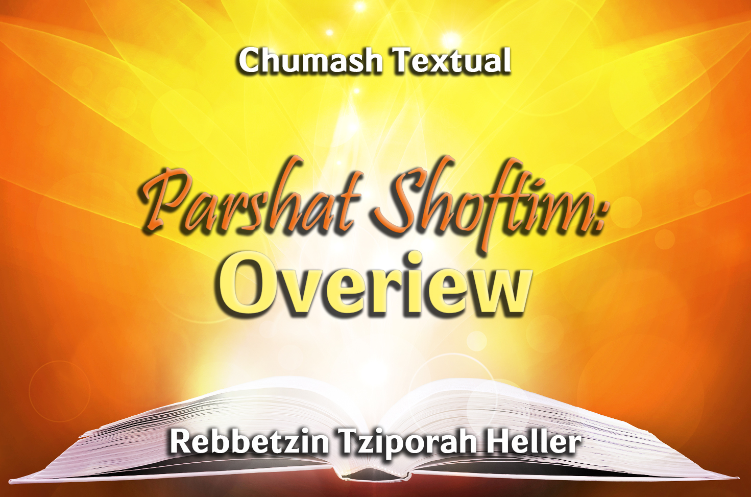 Photo of Parshat Shoftim – Overiew