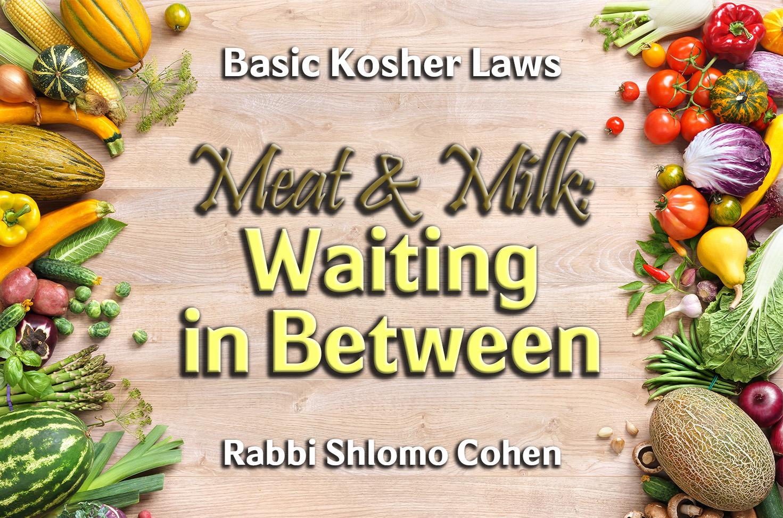 Photo of Meat & Milk – Waiting in Between