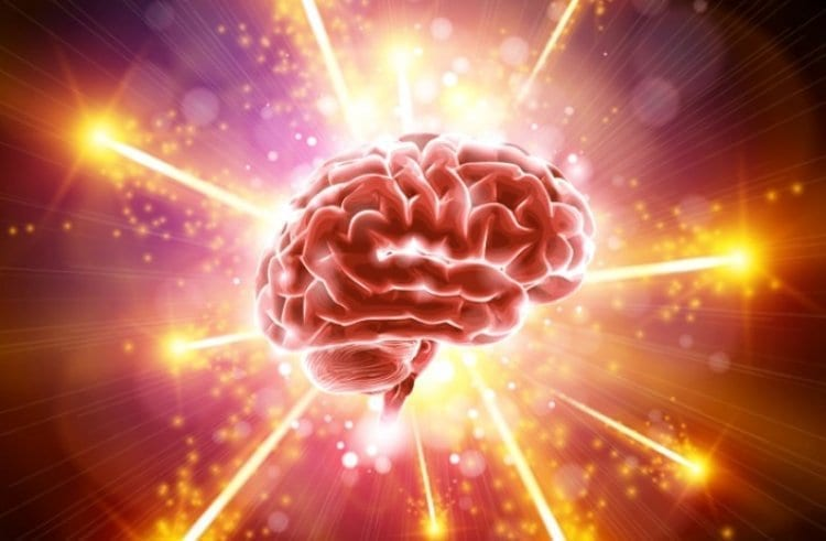 Photo of 15 Astounding Facts About the Brain