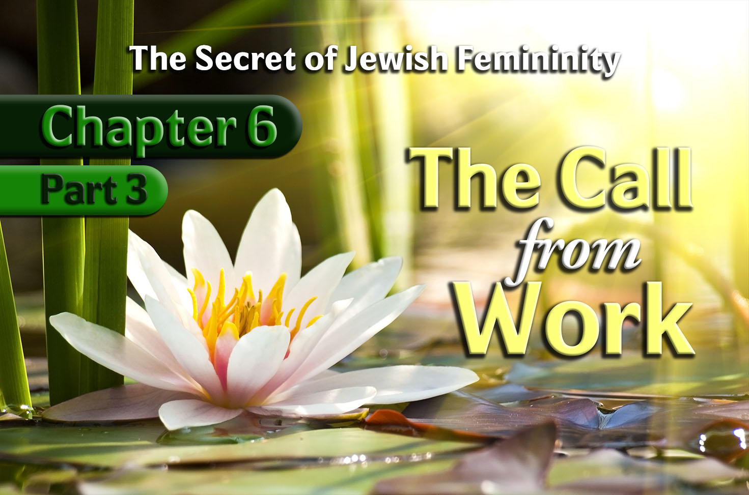 Photo of The Secret of Jewish Femininity – 06×03 – The Call from Work