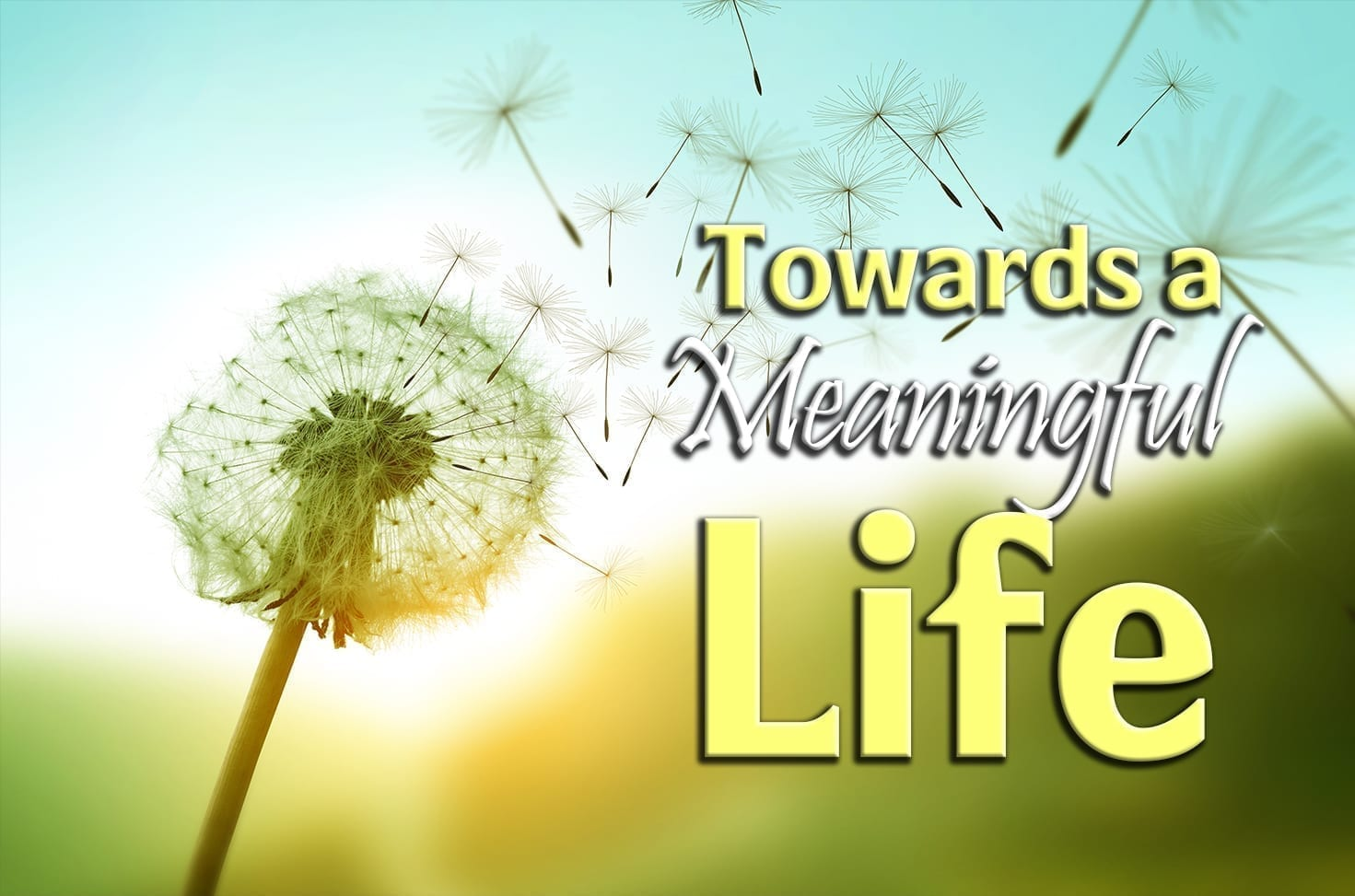 Photo of Towards a Meaningful Life