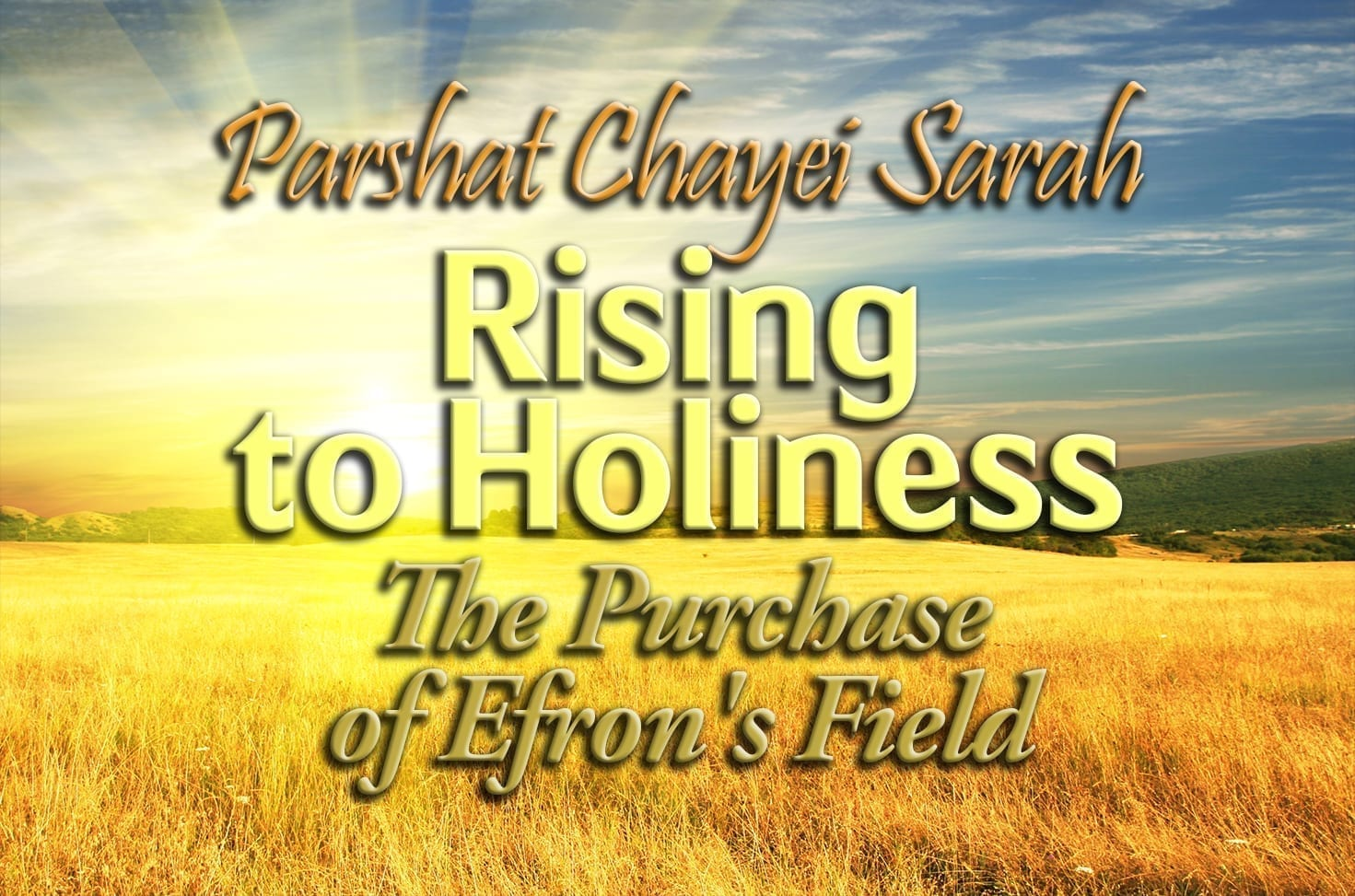 Photo of Parshat Chayei Sarah – Rising to Holiness – The Purchase of Efron's Field