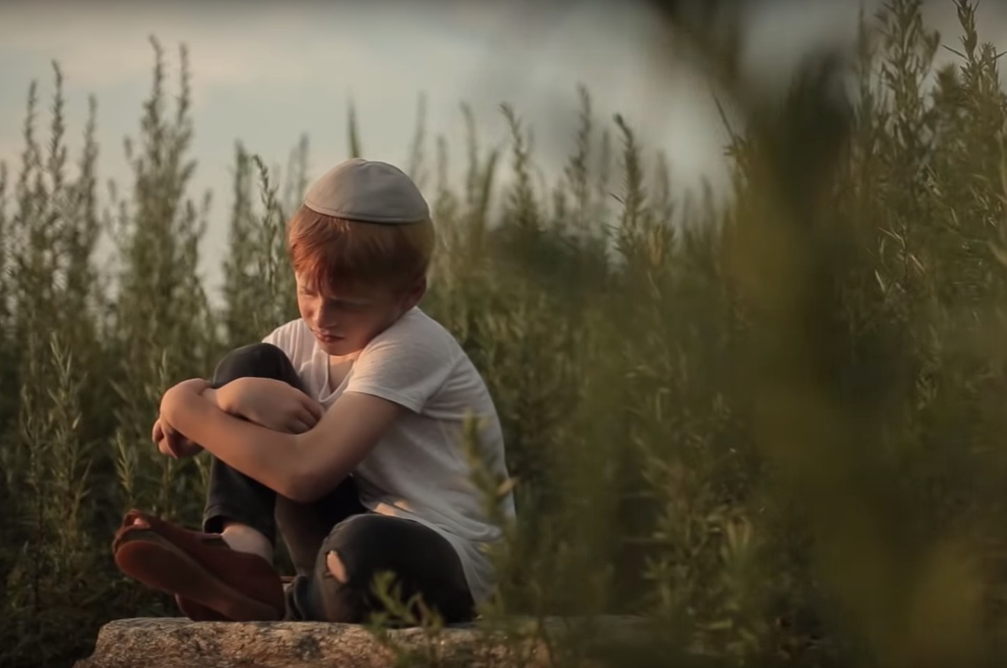 Photo of Beri Weber: Riboin – Music Video