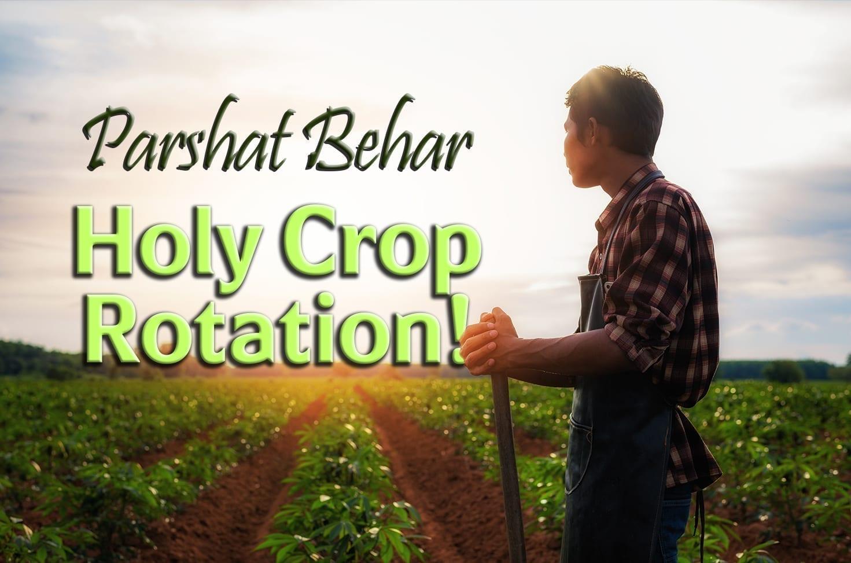 Photo of Parshat Behar –  Holy Crop Rotation!
